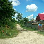 Galeria Kobylniki