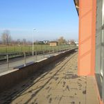 Galeria Hala sportowa - po zakończeniu robót